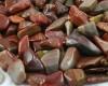 Cara Merawat Batu Fosil Kayu Cocok Untuk Anak Muda