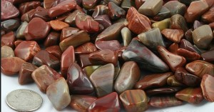 Batu Fosil Kayu Cocok Untuk Anak Muda