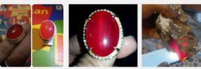 Cara Melihat Batu Red Raflesia Fanta Super Bengkulu