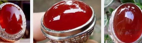 Batu Red Raflesia Bengkulu
