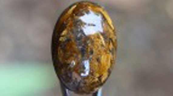 Batu Akik Badar Emas Termahal