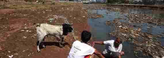 Sungai Di Indonesia Mulai Tercemar