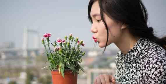 Tips Perawatan Kecantikan Wajah,Bibir, dan Rambut Murah Seperti Artis