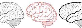 Cara Mempertajam Kemampuan Otak Manusia Menurut Ilmuan