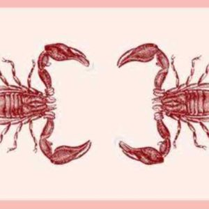 Alasan Mengapa Scorpio Pendendam