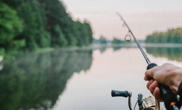 Arti Mimpi Memancing Ikan