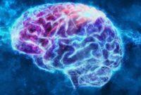 Kelebihan Pada Otak Manusia