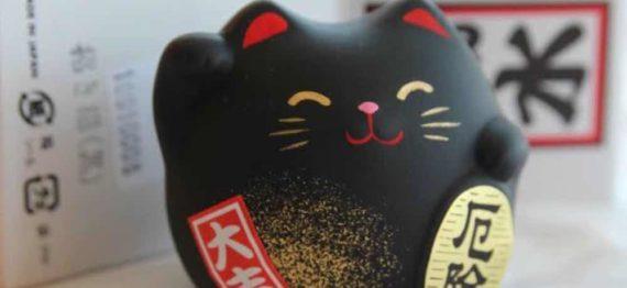 Kucing Hitam Merupakan Lambang Keberuntungan di Jepang