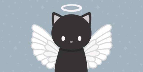 Mimpi Kucing Mati