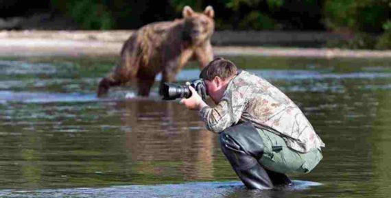 Mimpi Tentang Beruang