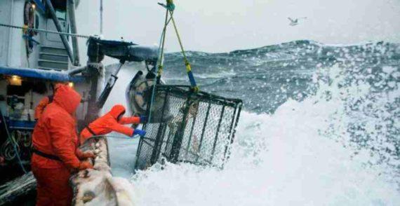 Nelayan Alaska