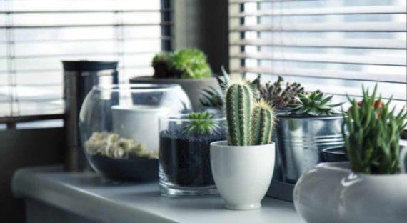 Penyebab Munculnya Energi Negatif di Dalam Rumah