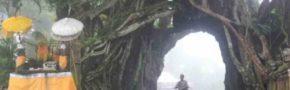 Kisah Mistis Pohon Bunut Bolong Yang Terkenal Angker