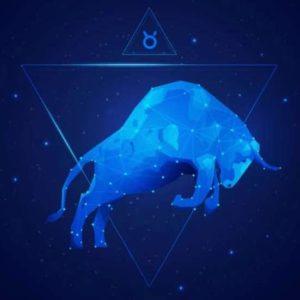 Tipe Sahabat Yang Cocok Untuk Taurus