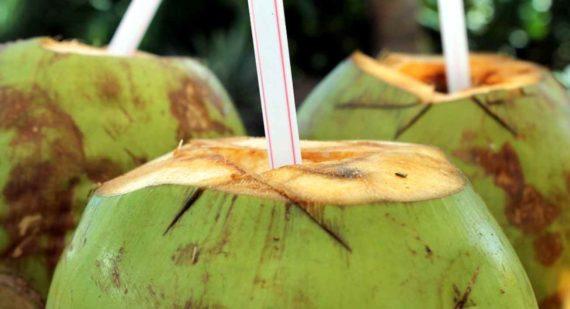 10 Manfaat Meminum Air Kelapa Setiap Hari Bagi Tubuh
