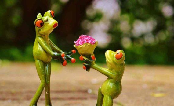 Ilustrasi Seseorang Melamar Untuk Menikah