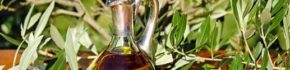 7 Minyak Anti-Aging Alami Terbaik Agar Kulit Awet Muda