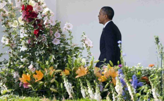 Kebun Mawar Gedung Putih